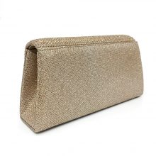 Women's Party Evening Bag