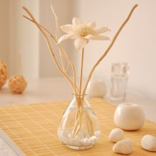 Fragrance Reed Diffuser Oil Supplement